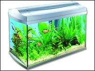 Akvárium set TETRA AquaArt 57 x 35 x 30 cm (60l)