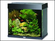 Akvárium JUWEL set Lido 120 černé (120l)