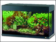 Akvárium JUWEL set Rio 125 černé (125l)