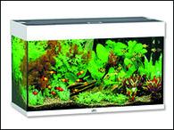Akvárium JUWEL set Rio 125 bílé (125l)