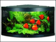 Akvárium JUWEL set Trigon 350 černé (350l)