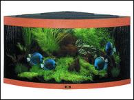 Akvárium JUWEL set Trigon 350 buk (350l)