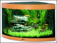 Akvárium JUWEL set Trigon 190 buk (190l)