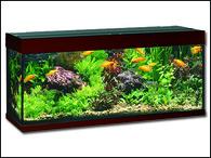 Akvárium JUWEL set Rio 240 tmavě hnědé (240l)