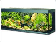 Akvárium JUWEL set Rio 400 černé (450l)
