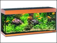 Akvárium JUWEL set Rio 400 buk (450l)