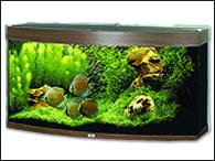 Akvárium JUWEL set Vision 260 tmavě hnědé (260l)