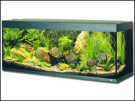 Akvárium JUWEL set Rio 300 černé (350l)