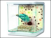 Akvárium MARINA Betta Kit Fireworks (2l)