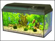 Akvárium set MARINA Basic (54l)