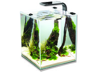 Akvárium set AQUAEL Shrimp Smart 29 x 29 x 35 cm (30l)