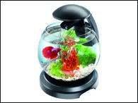 Akvárium set TETRA Cascade LED černý (6,8l)