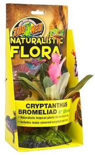 Zoo Med Naturalistic Flora Balení: Cryptanthus cca 20 cm