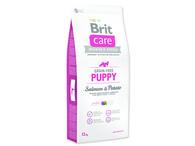 BRIT Care Grain-free Puppy Salmon & Potato (12kg)