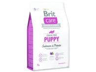 BRIT Care Grain-free Puppy Salmon & Potato (3kg)
