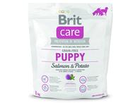 BRIT Care Grain-free Puppy Salmon & Potato (1kg)