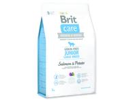 BRIT Care Grain-free Junior Large Breed Salmon & Potato (3kg)
