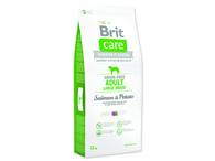 BRIT Care Grain-free Adult Large Breed Salmon & Potato (12kg)
