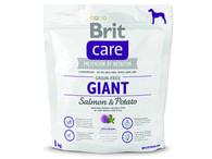 BRIT Care Grain-free Giant Salmon & Potato (1kg)
