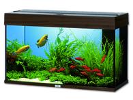Akvárium JUWEL set Rio 125 tmavě hnědé (125l)