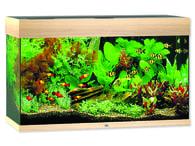 Akvárium set JUWEL Rio 125 dub (1ks)